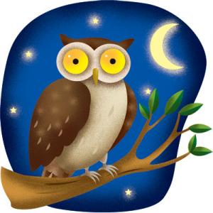 THÀNH NGỮ 1 - Night Owl